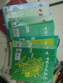 中医外治杂志96年-99年12期合售