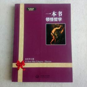 一本书领悟哲学