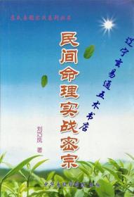 《民间命理实战密宗》刘巧凤著