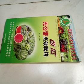 西瓜无公害高效栽培