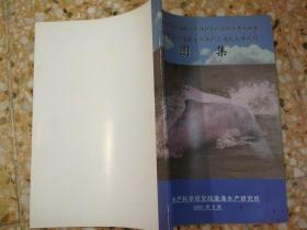 珠江口中华白海豚自然保护区:建设规划,综合科学考察报告。图集