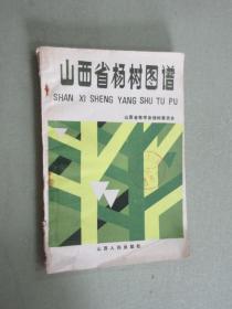 山西省杨树图谱