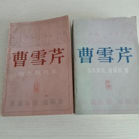 曹雪芹(上中卷)