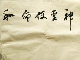 """白银市书法家协会秘书长、副主席,张均永绘和平鸽""""神圣使命 和平为首""""    【138×68厘米】"""