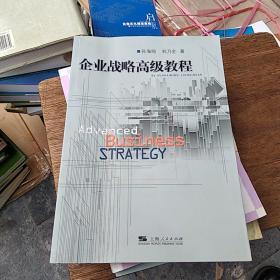 企业战略高级教程
