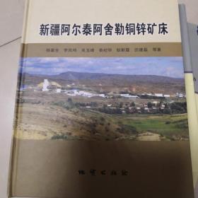 新疆阿尔泰阿舍勒铜锌矿床