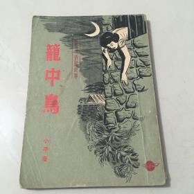 早期环球小说 女飞贼黄莺故事《笼中鸟》小平著