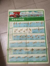 1972年游泳辅导挂图两张合售――8开一张――2开一张