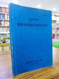 云南省江城县勐野井钾盐矿研究报告