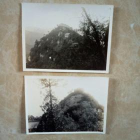 两张估计解放初期,终南山风景老照片,背有签字编号,印章(西京娱乐摄影合作社…注意此照片,作者保留著作权,不许翻照)可见不是普通照片。