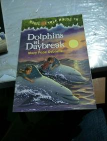 Dolphins at Daybreak (Magic Tree House #9) 神奇树屋系列9:与海豚共舞