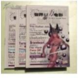 世界经典电影全纪录--世界暴力电影(1、2、3全三册)附光碟