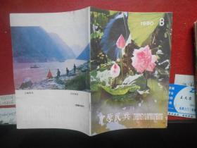 中原民兵1980.8(总第99期)(无字迹无勾划95品,封面漂亮)