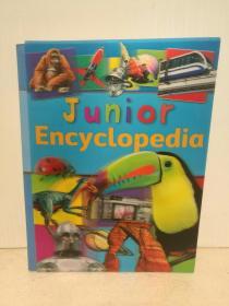 全彩少儿世界知识百科全书 Junior Encuclopedia (童书)英文原版书