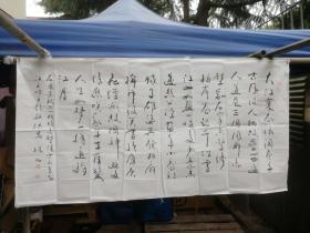 著名画家 书法家( 林凡) 书法 尺寸138*68厘米