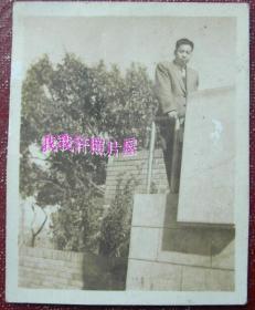 民国老照片:民国36年,西装知识分子——张明义。背面有字题 【陌上花开系列】