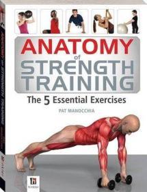 力量训练Anatomy of Strength Training 5 Essential Exercises