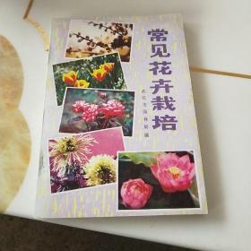 常见花卉载培