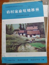 农村家庭坑塘养鱼