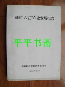 """湖南""""八五""""农业发展报告(16开)"""