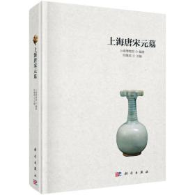 上海唐宋元墓(精装本 )