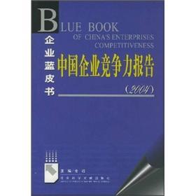 中国企业竞争力报告2004