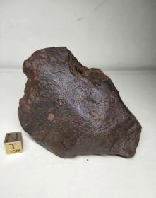 1877 国际命名NWA 西北非石陨石 302.7克 -