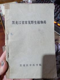 黑龙江省常见野生植物药