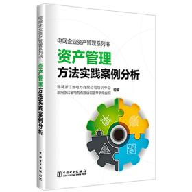 电网企业资产管理系列书——资产管理方法实践案例分析
