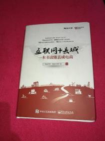 互联网+县域:一本书读懂县域电商