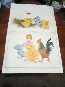 义务教育六年制小学语文第四册教学挂图-----第.3.课..丑小鸭