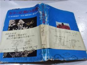 原版日本日文书 力ラ―京都の花暦 田中阿里子 株式会社淡文社 1973年4月 大32开硬精装