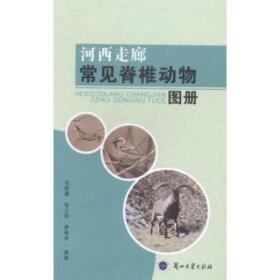 《河西走廊常见脊椎动物图册》