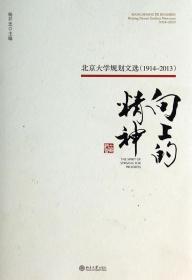 向上的精神:北京大学规划文选(1914—2013) 正版 杨开忠   9787301221624
