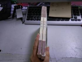 德彪西【伟大的西方音乐家传记丛书】T1079