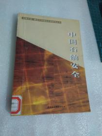 中国石油安全【有破损 馆藏】