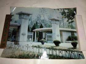南京中山植物园大门照片
