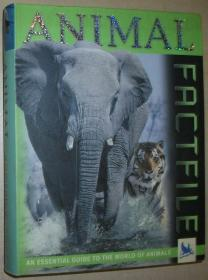 英文原版书 Animal Factfile : A Definitive guide to the world of animals 彩色照片图文本 by David Burnie