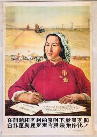 1954年年画【在自愿和互利的原则下,发展互助合作运动,逐步走向农业集体化】2开
