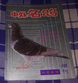 中外名鸽 体育画报增刊 九品强 包邮挂
