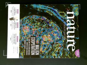 自然原版外文杂志期刊 nature 508 1-144 2014/04/03 no.7494