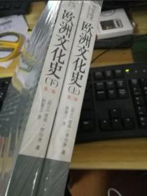 欧洲文化史第二版 上下册全2册共二册 第2版 正版塑封