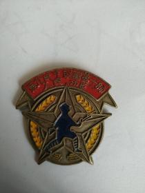 纪念章   东北民主联军第一师  人民功臣《1947……13278514831》