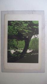 """上世纪五六十年代""""绿色森林乡村""""套色板画(内容需自鉴)"""