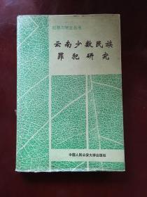 犯罪与矫正丛书:云南少数民族罪犯研究  精装带护封