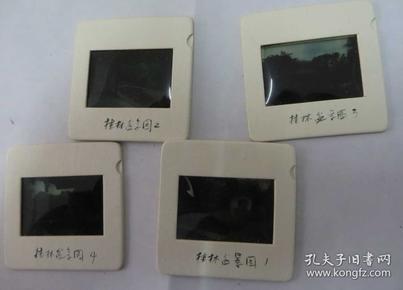 桂林盆景园        幻灯片 4张