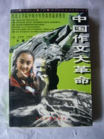 中国作文大革命(B卷)