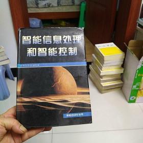 智能信息处理和智能控制——智能自动化丛书
