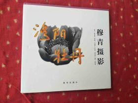 穆青摄影:洛阳牡丹