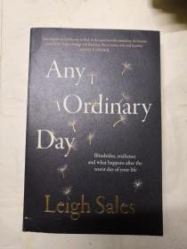 Any  Ordinary  Day 【Lelgh Sales】